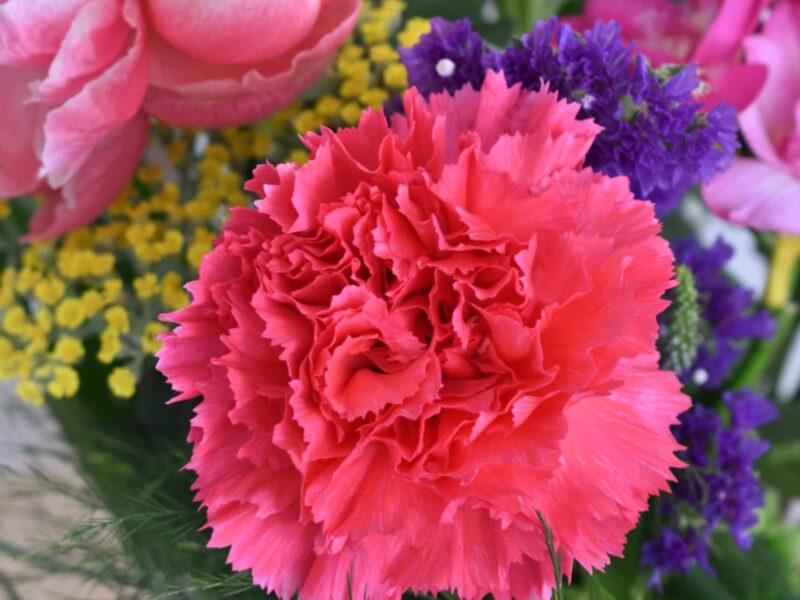 bloemenvandeteler-gallerij-1